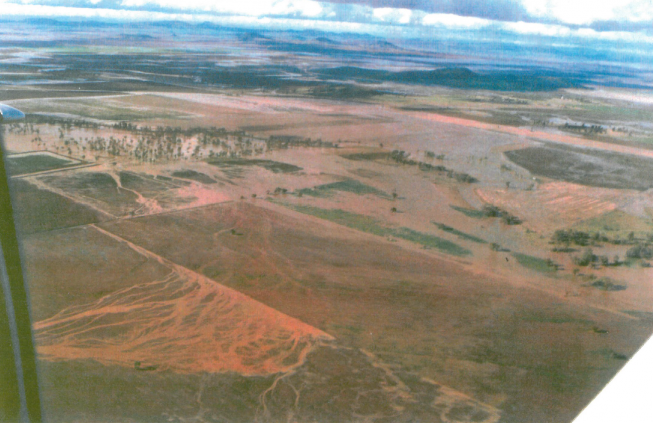Agricultural Land, Mullaley, NSW